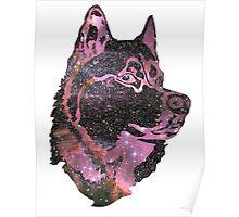 Space Husky Poster