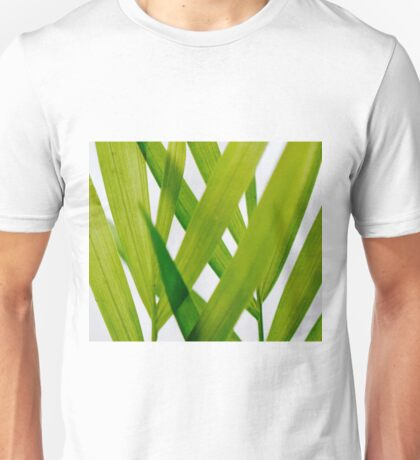 Florida Palm Unisex T-Shirt