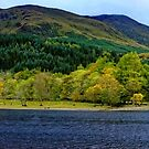 Panorama of Loch Lubnaig in Autumn  by Stephen Frost