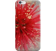 Frosty Red Brush iPhone Case/Skin