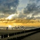 Feeding sea gulls in Domburg around sunset by 7horses