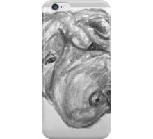 Whirley the dog iPhone Case/Skin