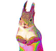 Psychedelic Squirrel Photographic Print