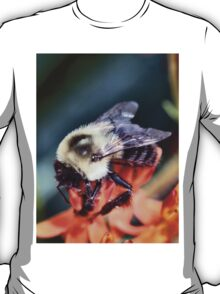 Buzzing About T-Shirt