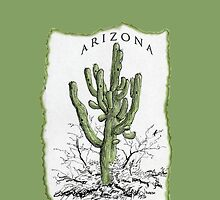 ARIZONA iPHONE case by James Lewis Hamilton
