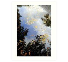 Foliage Reflection Art Print