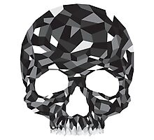 Obsidian Skull Photographic Print