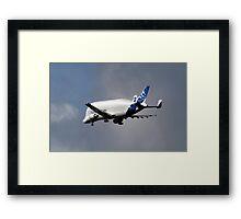 AirBus Beluga Transporter Plane Framed Print
