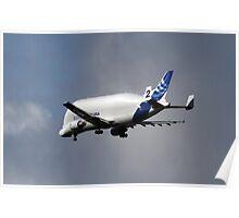 AirBus Beluga Transporter Plane Poster