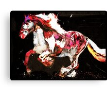 Painted Irish Gypsy Horse Canvas Print