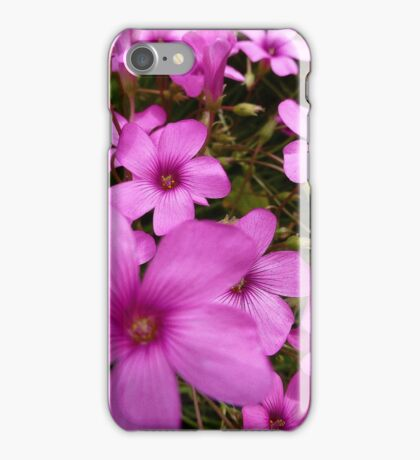 Pink Profusion iPhone Case/Skin