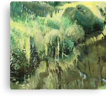 The side of the ditch Canvas Print