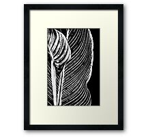 Leaf Design Framed Print