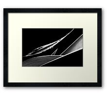 A Delicate Balance Framed Print