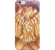 a bird in the Monastery. Anthropomorfism. vault keystone iPhone Case/Skin
