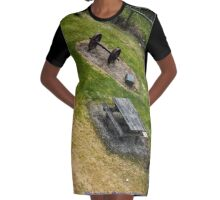 Wheels On Top. Graphic T-Shirt Dress