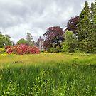 Dunans Castle gardens by Geoff Carpenter