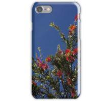 Baby Bottle Brush Tree iPhone Case/Skin
