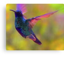 My Spirit Is Soaring Canvas Print