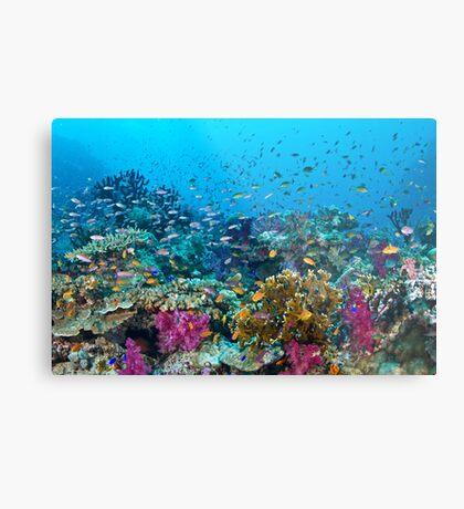 Fantasea Reef Metal Print