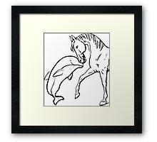 Animal Love Framed Print
