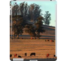 Grazing Cows in the Glow of a Sunset iPad Case/Skin
