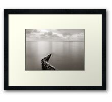 Long exposure seascape with fallen palm tree Framed Print