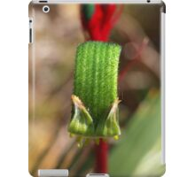Red & Green Kangaroo Paw - Macro iPad Case/Skin