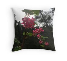Oregon Pacific Gorge Flowers Throw Pillow