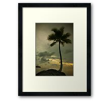 Palm tree with Retro summer filter effect Framed Print