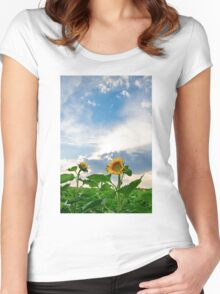 View of field with blooming sunflowers with sunset in background Women's Fitted Scoop T-Shirt