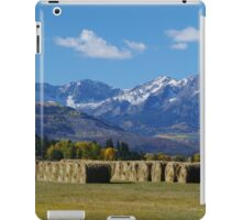 Rolled Up iPad Case/Skin