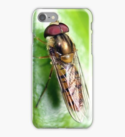 Hedgerow Insect iPhone Case/Skin