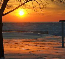 2014 Winter Sunset - 1 by Debbie Mueller