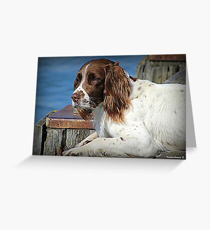 Fishermans Friend Greeting Card