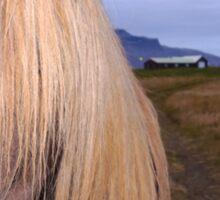 Icelandic Horse with impressing mane Sticker