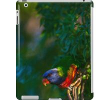 Rainbow Lorikeet (Trichoglossus haematodus) iPad Case/Skin