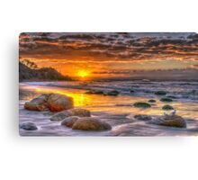 Two Seagulls Canvas Print