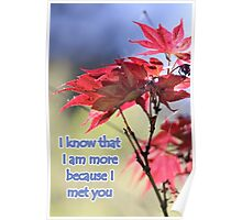 I know that I am more..... Poster