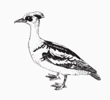 bird illustration 2 One Piece - Short Sleeve