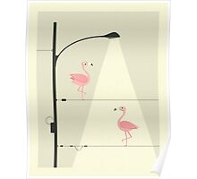 PINK FLAMINGOS ON A WIRE Poster