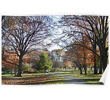 Hoopes Park, Auburn, New York Poster