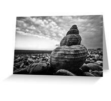 Shingle and Shell Greeting Card