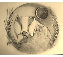 Badger in the Moonlight Photographic Print