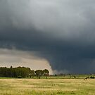 Approaching Thunderstorm by Martie Venter