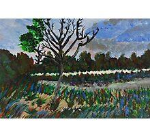 Landscape One Photographic Print