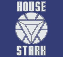House Stark by ZyksDesign
