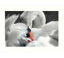 Soft As A Feather!  Art Print