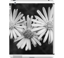 Triple daisy print iPad Case/Skin