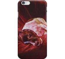 Artist's Dog on Sofa iPhone Case/Skin